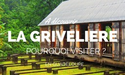 HABITATION LA GRIVELIERE Offer Saveurs Passion